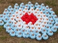 RAF Ducks