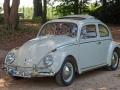 VW 1200 Export von 1962
