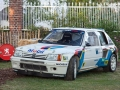 Peugeot 205 GTI Turbo T16 von Michele Mouton